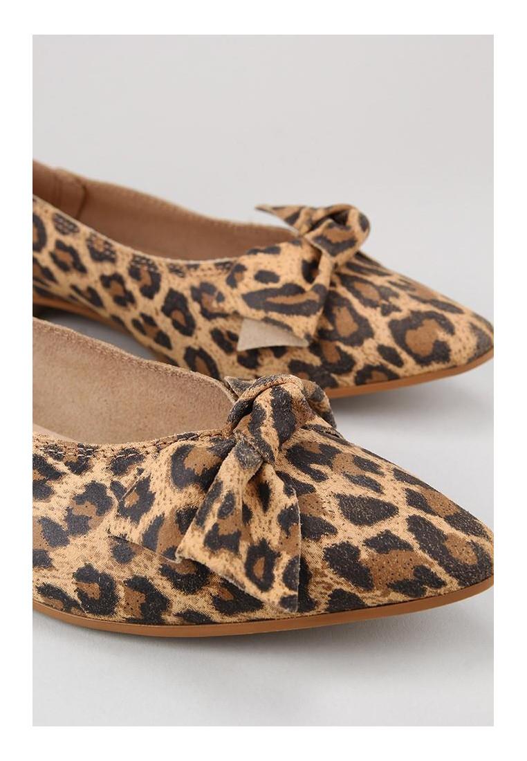 krack-core-new-grateful-leopardo