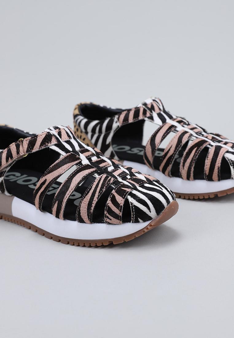 gioseppo-58758-cebra